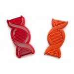DNA Cookie cutter fondant cutter
